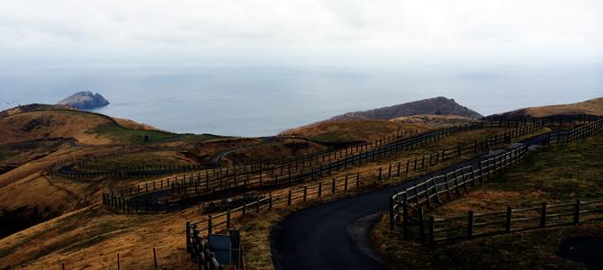 赤ハゲ山への道