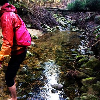 かぶら杉裏の川2