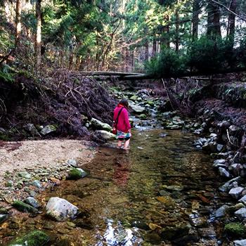 かぶら杉裏の川