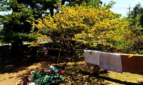 お庭after
