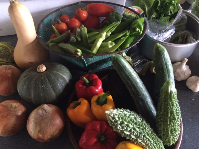 本日の食材・野菜部門