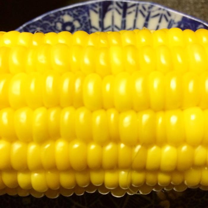 宮崎産トウモロコシ